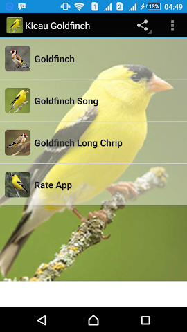 android Singing Goldfinch Screenshot 0