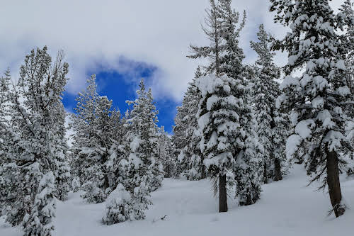 What to Do in Lake Tahoe in the Winter // Deep snow in Lake Tahoe