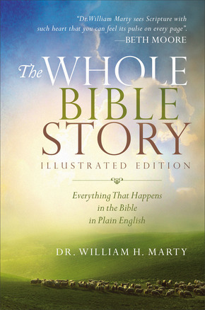 Whole Bible Story Cover.jpg