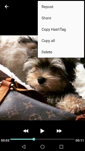 Video Downloader - for Instagram Repost App game (apk) free download for Android/PC/Windows screenshot