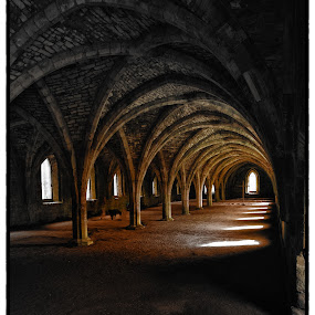 by CLINT HUDSON - Landscapes Travel ( fountains abbey )