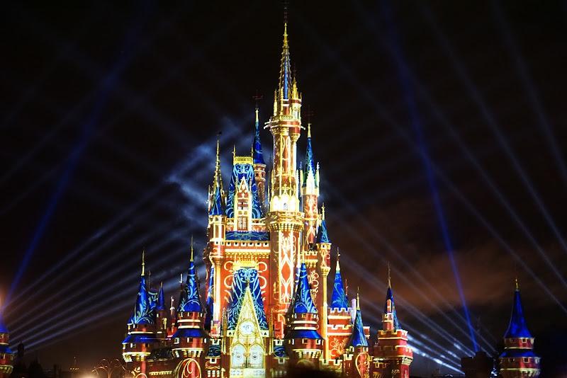 Disneyland di Magendie