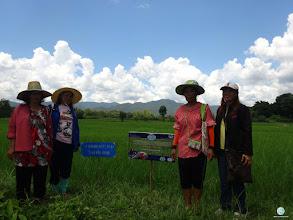 Photo: Mrs. Saysin Chanoi, Huatung village, Bansiaw sub district, Fak Tha district, Uttaradit province
