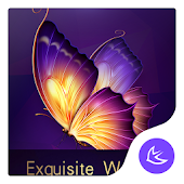 Exquisite-APUS Launcher theme