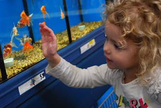 Photo: Here's my little helper! If you want to make her happy just take a detour by the fish!