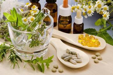 phythotherapie plante