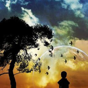 Nature by Projit Roy Chowdhury - Digital Art Places