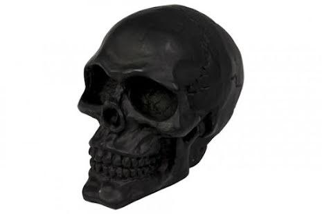 HIGHWAY HAWK Skull Emblem