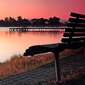 Sunset Chair by Greg Van Dugteren - City,  Street & Park  City Parks ( serene scene, park, serene, bench seat, pwcbenches, pink, view )