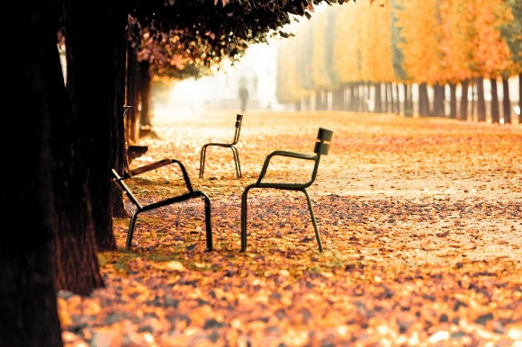 Осень во Франции: что посмотреть и куда поехать осенью во Франции. Лучшие места осенью во Франции. Осенние праздники и фестивали во Франции. Города Франции.