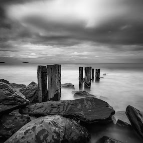 Youghal Strand Groynes 2014 1 by John Holmes - Black & White Landscapes ( clouds, sand, old, ireland, cork, monochrome, wood, black and white, groynes, sea, weathered, sky, youghal, rocks, youghal strand,  )