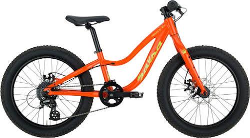 Salsa Timberjack 20+ Kid's Bike