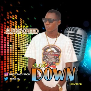 Cover Art for song slow down