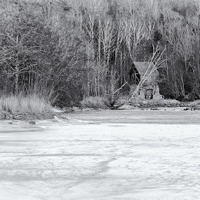 Soli brug by Jørgen Schei - Landscapes Forests ( mill, black and white, trees, forest, frozen, river )