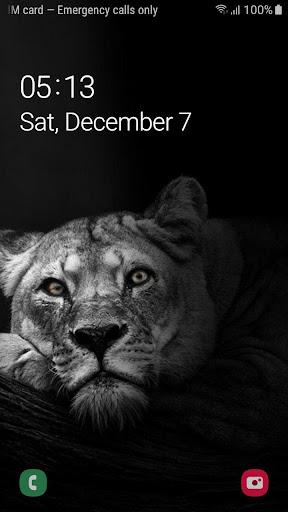Download Best Black Lion Wallpaper Fhd Free For Android Best Black Lion Wallpaper Fhd Apk Download Steprimo Com