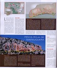 Photo: Valencia - PENYA ROJA DE MARXUQUERA -01- Gandia (SKR 63 - 2009)
