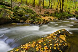 Photo: #landscapephotography curated by +Margaret Tompkins, +Ke Zeng, +David Heath Williamsand +paul t beard +10000 PHOTOGRAPHERS around the World #1000photographersaroundtheworld by +Robert SKREINERand +Walter Soestbergen #photoplusextract +HQSP Landscape #hqsplandscape  #germany  #saxony   #saxonswitzerland  #autumn