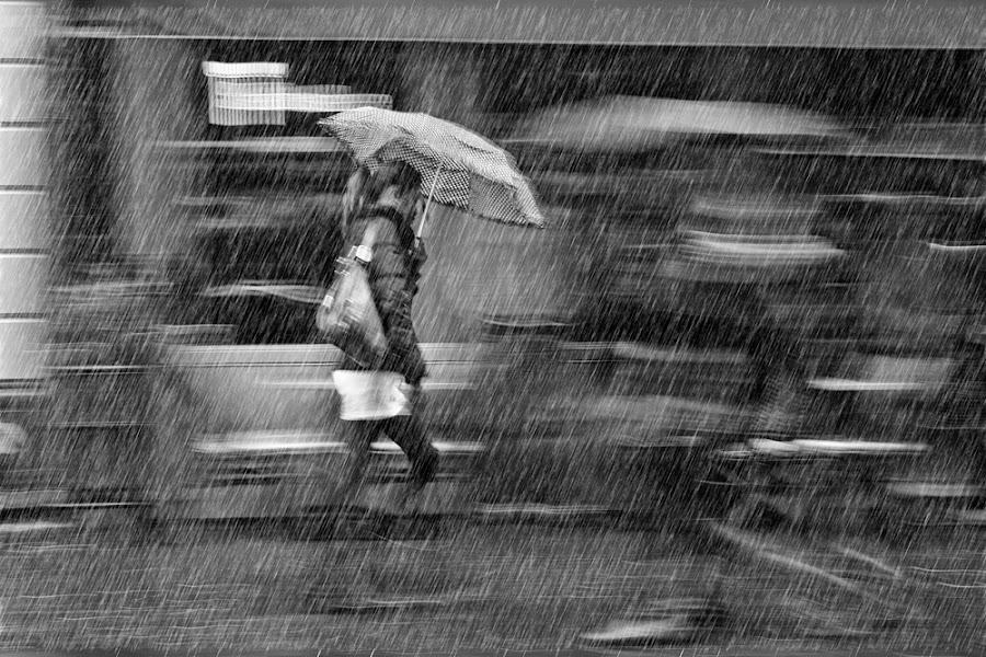 RAIN IN AMSTERDAM by Domen Dolenc - News & Events World Events ( slide black, white, amsterdam, blur, rain )