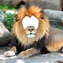 Lion Photo Montage icon