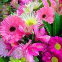 Ramos de flores hermosos icon