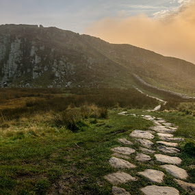 Hadrians Wall by John Haswell - Landscapes Travel ( hill, fog, path, sunrise, wall,  )