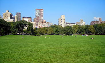 Photo: Sheep Meadow, Central Park