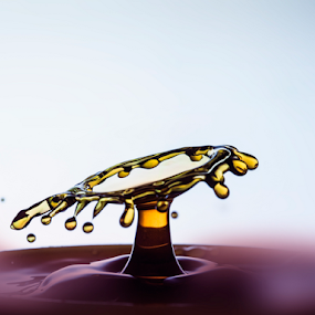 Amazing drops: Drop Collision by Deepak Goswami - Abstract Water Drops & Splashes ( bright, set, drop, dew, purity, illustration, clear, clean, nature, vector, wet, transparent, rain, shiny, cool, water, abstract, icon, isolated, symbol, white, shape, bubble, environment, liquid, droplet, blue, background, raindrop, aqua, natural, design )