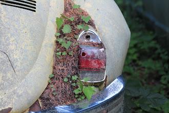 Photo: Nanaimo - VW Kaefer