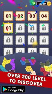 Triangle Puzzle - Block Hexa 2020