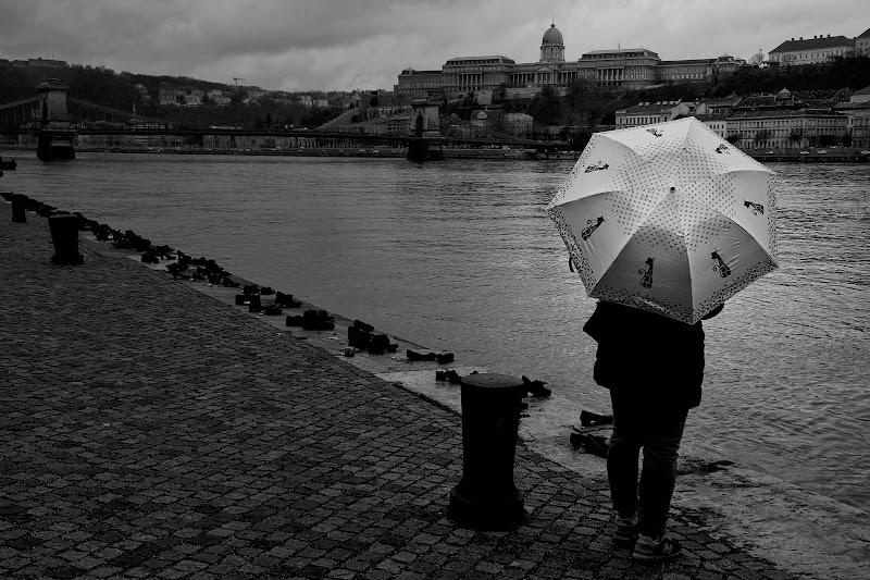 Lungo la riva del Danubio di Enry_67