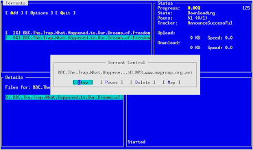 Photo: Torrent options.