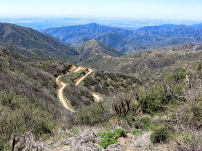Photo: View southwest over the San Dimas Experimental Forest and San Dimas Canyon. The road I took this morning is in the foreground (I shall bypass it on my return). Johnstone Peak (3178') stands pointed in the middle; a fire lookout tower stood on that peak from 1934-1992. Glendora Mountain can be seen on the far right. Catalina Island is a faint strip on the horizon in the upper left corner.