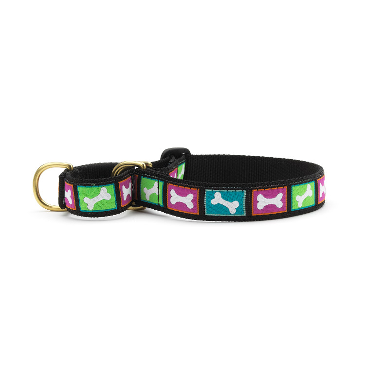 Bright Bones Martingale Dog Collar by Pets Manic