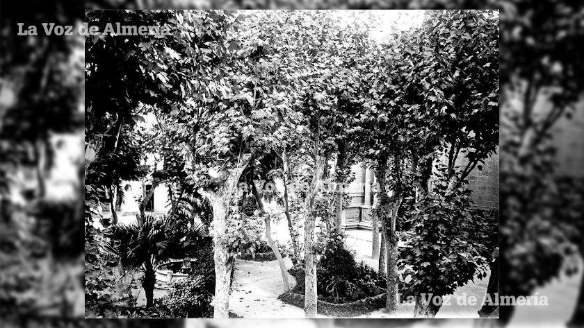 La parte central de la Plaza de la Catedral llegó a ser un bosque durante décadas. En la reforma de 1916 se apostó por los árboles.