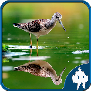Reflection Jigsaw Puzzles for PC and MAC
