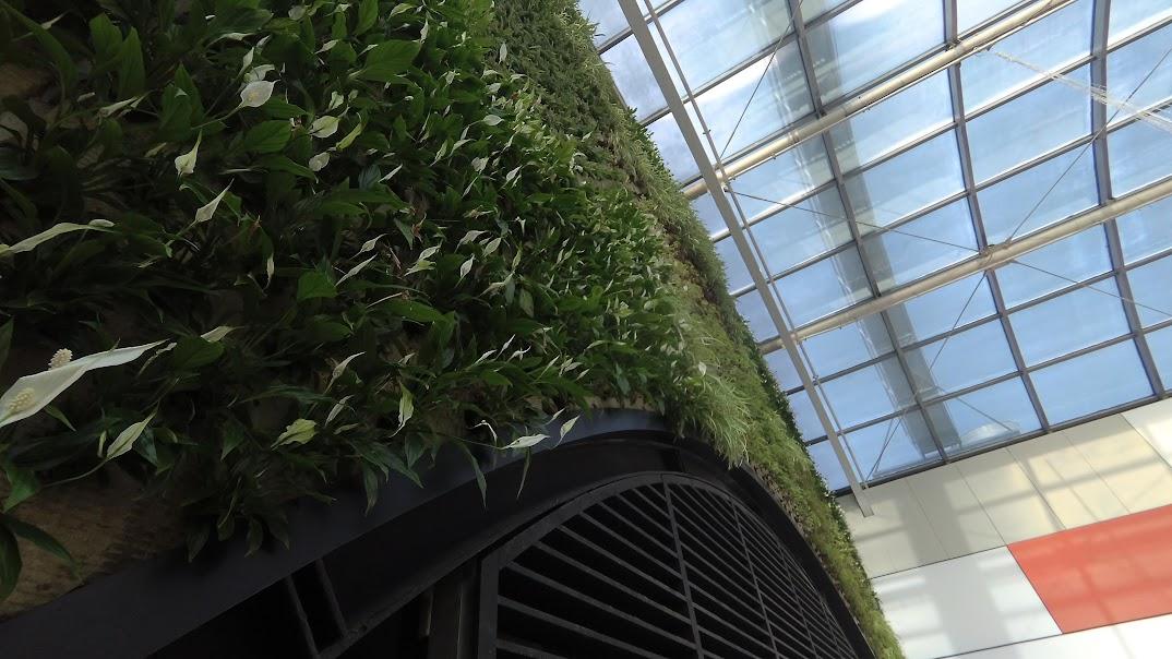 Plantas instaladas en el jardín vertical del centro comercial Diagonal Mar en Barcelona