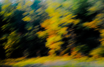 Photo: Blurstract 4J4 122/366  Colors of Fall  Drive by shot. Somewhere in I-90.