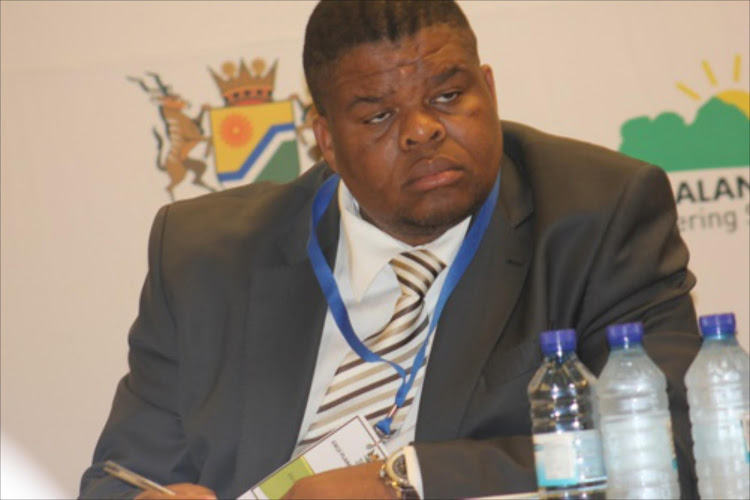 Energy Minister David Mahlobo. File photo.