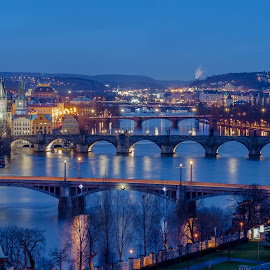 Prague bridges by Robert Grim - City,  Street & Park  Historic Districts ( europe, blue hour, czech, czech republic, bridge, praha, prague, photography )