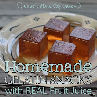Healthy Homemade Gelatin Snacks using Real Juice