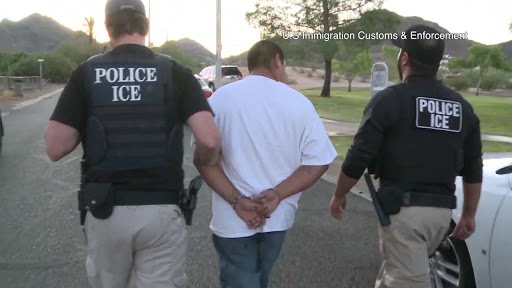 Immigration raids yield impressive arrest results