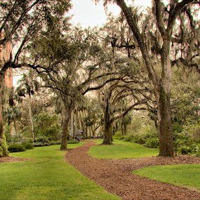 Bok Tower Gardens by Rob Whidden - City,  Street & Park  Historic Districts (  )