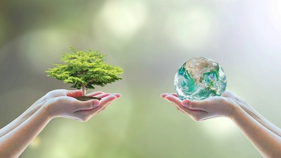 Paragreen Solutions Pvt. Ltd - Environment consultant