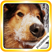 Jigsaw Puzzles: More Dogs