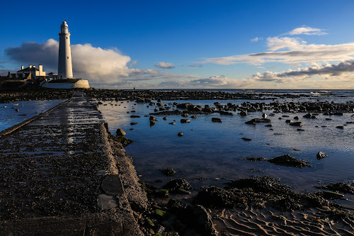 St Mary's Lighthouse by Mandy Hedley - Landscapes Waterscapes ( st marys lighthouse, lighthouse, reflections, sea, north east england, sunrise, rocks,  )