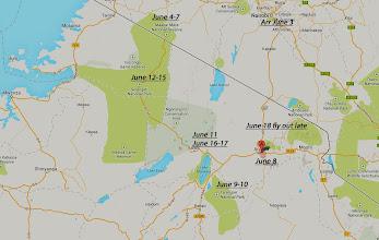 Photo: OATS Serengeti Safari June 8-18, 2013. See KENYA MAASAI MARA ALBUM for the June 3-7 pretrip