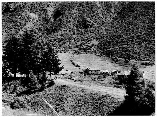 Valle Camonica di Silvio Lorrai