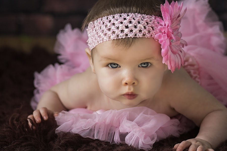 the stare by Melissa Marie Gomersall - Babies & Children Babies ( fluffy, wood, blue eyes, fur, pink, cute, flower,  )