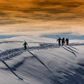 Towards the top of the mountain. by Grigore Roibu - Sports & Fitness Snow Sports ( skiing, person, mountain, silhouette, altitude, sports, wildlife, rock, recreation, people, alpine, snowbank, trail, pick, offpiste, alps, top, wintersport, ski, spots, extreme, texture, trace, white, track, snowy, winter, route, outdoor, off piste, snowbound, air )