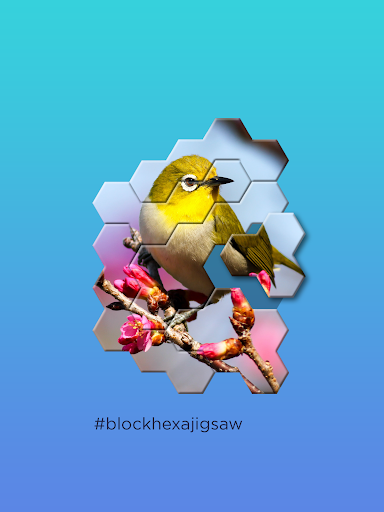 Block Hexa Jigsaw Puzzle screenshots 7
